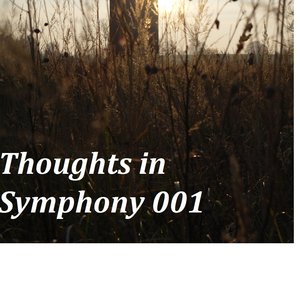 Thoughts in Symphony 001
