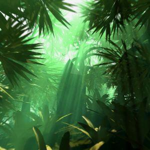 Jungle Sessions 1994