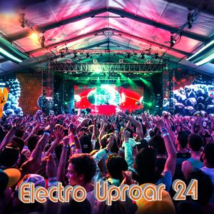 Electro uproar vol.24