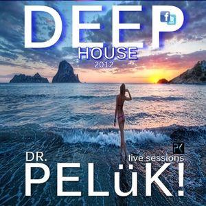 DR. PELüK! sesion DEEP HOUSE nov. 2012