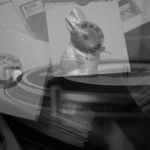Bunny 45 MIX - News in !