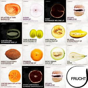 Frucht special mix Minimal Techno - Voayge & Evade Feb2013
