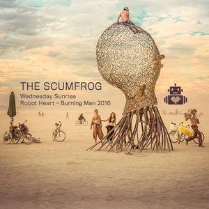Scumfrog – Robot Heart - Burning Man 2016