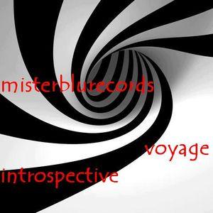 VOYAGE INTROSPECTIVE