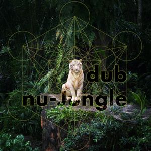 Keng~ Inna Junglist Style - Dub / Nu Jungle / Juke DjSet + Live Performance @ RootsDealers 4-10-2014