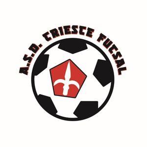 Emilio Cattolico dell'ASD Trieste Futsal