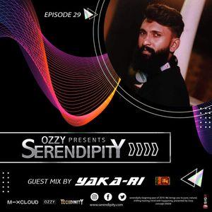 Serendipity EP 029 guest mix by YAKA-RI