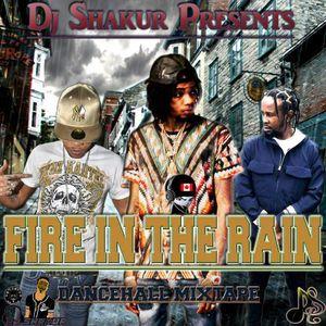 DJ Shakur - Fire In The Rain (Dancehall Mixtape 2017)