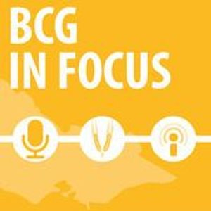 BCG In Focus - profitability in retained stubble systems