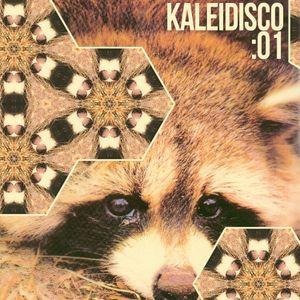 kaleidisco:01