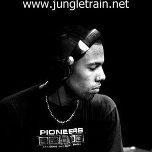 Silvahfonk IChi Ryu August 2010 Show @ Jungletrain.net ( live dj mix)