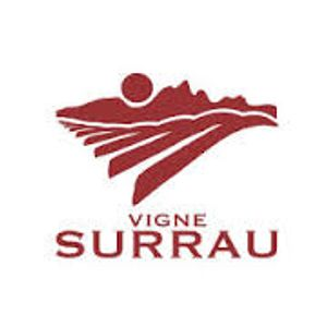 Vigne Surrau Night Lounge preview
