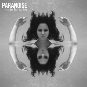 Paranoise Mix for Beat Junkies