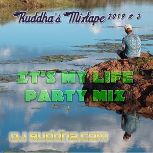 Ruddha's Mixtapes 2019 # 3 It's My Life Party Mix
