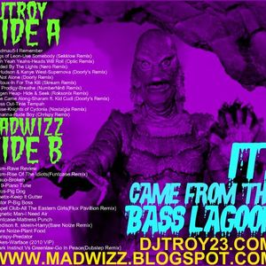 IT! Came from the bass lagoon-MadWizz Side B