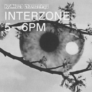 Interzone (28.12.17) w/ Camisole Records