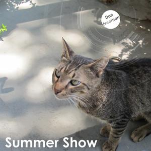 Dan Freeman Summer Show - 9th July 2013