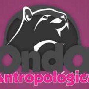 Onda antropológica - Bodega de Colecciones del Centro de INAH