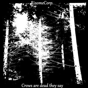 Rc - Crows Are Dead They Say