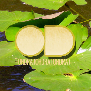 Oh Drat Podcast February 2011