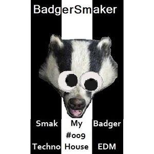 'Smak My Badger' EP009 on Insanity Radio