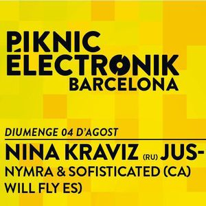 WILL FLY @ PIKNIC ELECTRONIK 4/08