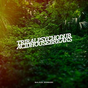 Tribalpsychodub acidhousebreaks