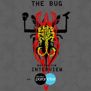 The Bug Interview