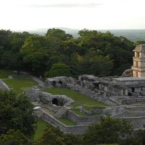 Muros que cuentan historias: Palenque