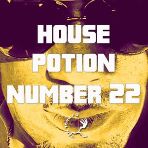 House Potion Number 22