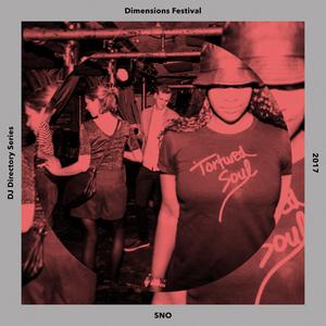 SNO - DJ Directory Mix #19