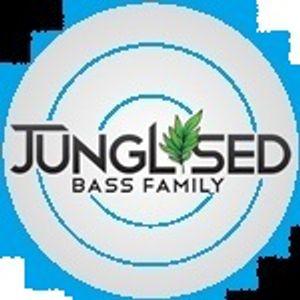 DJ'S JUICY & VYPER B2B 29-11-2012 JUNGLISED.CO.UK PT1