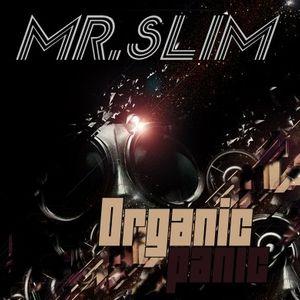 Mr.Slim - Organic Panic