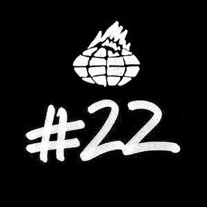MLM#22