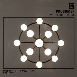 Prosumer & Fudge Fingas - 15th November 2016