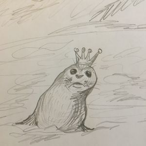 The Thief and the Thunderstorm - a Story about the Selkies
