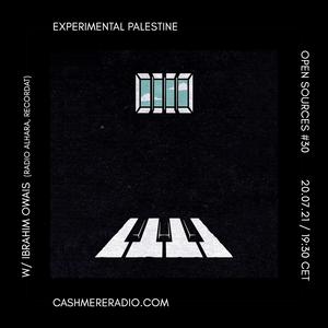 Open Sources #30: Experimental Palestine w/ Ibrahim Owais 20.07.2021