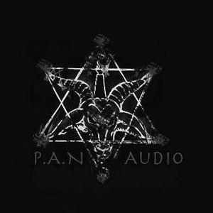 P.a.n Audio Mini Podcast no1 (https://soundcloud.com/panaudio)