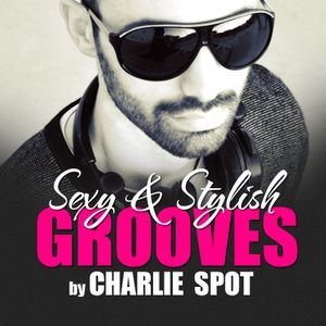 Sexy & Stylish Grooves Mixed By Charlie Spot