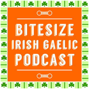 [Re-run] Your Irish Language Questions Answered (Ep. 11)