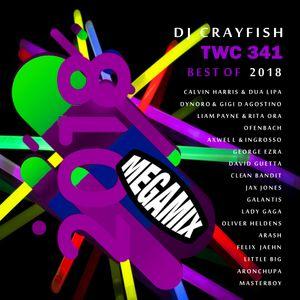 Best Of 2018 Megamix by DJ Crayfish