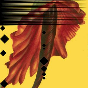 Mushrooms Project – Rivea Corymbosa Album Launch (26/11/16)
