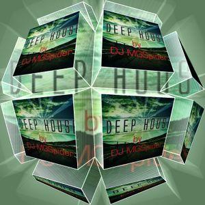 DJ MGSpider - Munich Deep House vol.5