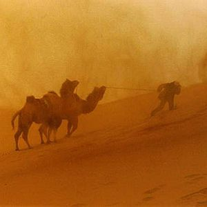 Dubstep in the Desert vol. 2 (Sandstorm Editiion)