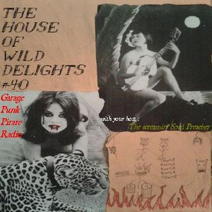 The House of Wild Delights #40