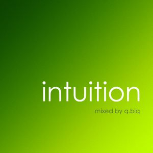 Intuition | lime | mixed by q.biq | 24.02.2012