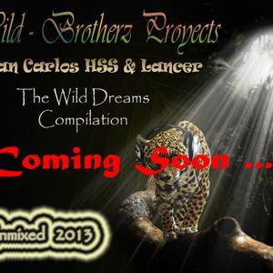 Juan Carlos HSS & Lancer - The Wild Dreams Compilation  2013 (Demo Mix)