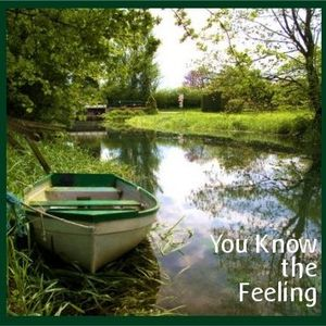 You Know the Feeling - Alternative Lounge & Chillbient