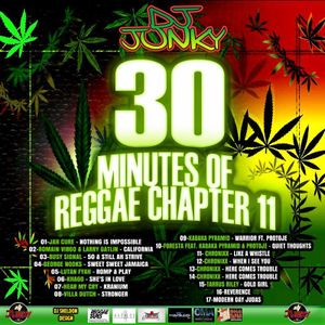 DJJUNKY - 30 MINUTES OF REGGAE CHAPTER 11