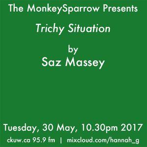 'Trichy Situtaion' an essay by Saz Massey
